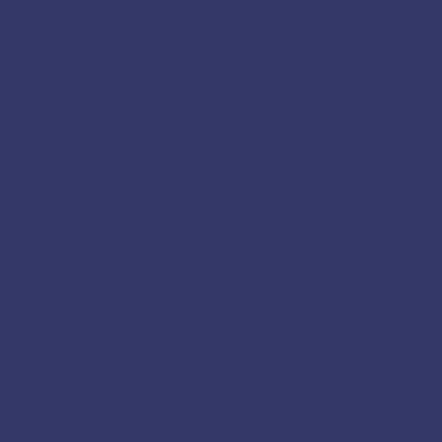 Dark Blue 1010