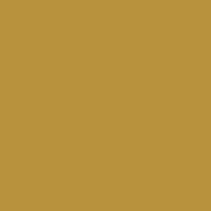 Rich Gold 0327